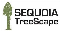 Sequoia TreeScape logo