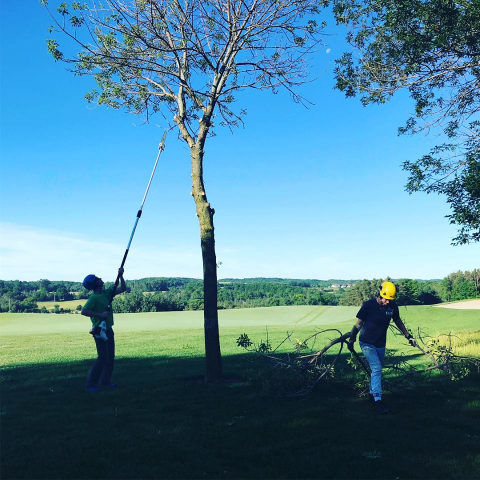 Gold Course Tree Care
